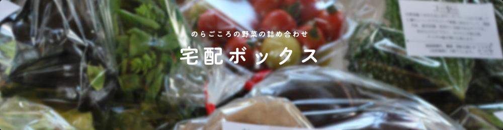 のらごころの野菜の詰め合わせ 宅配ボックス